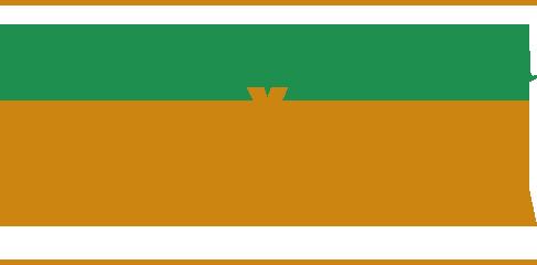 Logo Ženska inicijativa Knjaževca